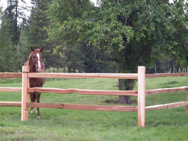Cedar Split Rail Corner Post 3 Rail Wood Fence